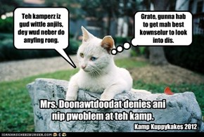Kamp director denies any problem