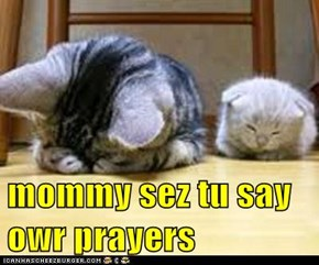 mommy sez tu say owr prayers