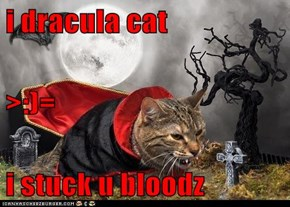 i dracula cat >:)= i stuck u bloodz