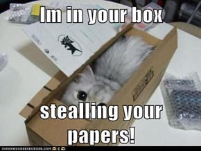 Im in your box  stealling your papers!