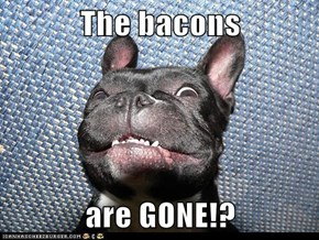 The bacons  are GONE!?