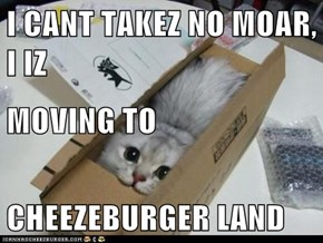 I CANT TAKEZ NO MOAR, I IZ MOVING TO CHEEZEBURGER LAND