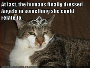 At last, the humans finally dressed Angela in something she could relate to.