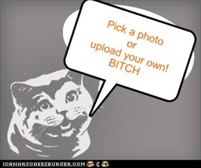 Pick a photo or  upload your own! BITCH