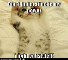 Don't Understimate my power  i fight cat style!!!