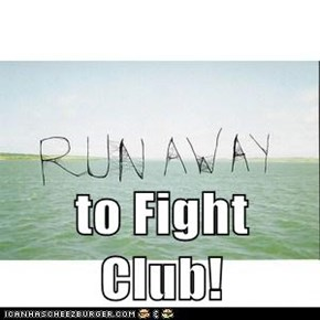 to Fight Club!