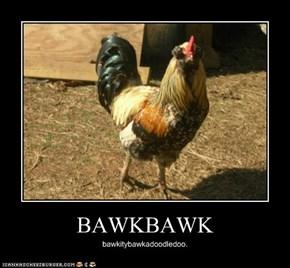 BAWKBAWK