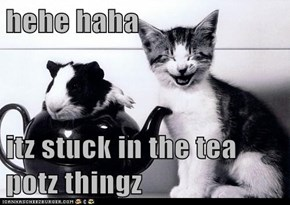 hehe haha  itz stuck in the tea potz thingz