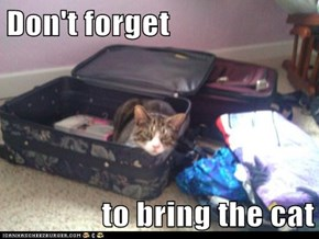 Don't forget  to bring the cat