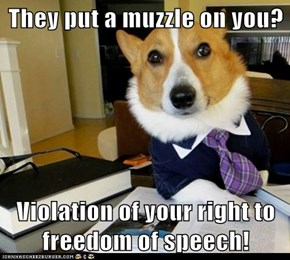 Lawyer Dog: Though Thankfully Not Your Right to Remain Silent