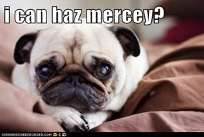 i can haz mercey?