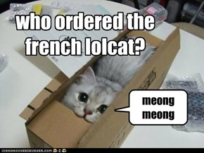 who ordered the french lolcat?