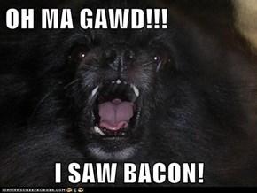 OH MA GAWD!!!  I SAW BACON!