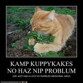 KAMP KUPPYKAKES  NO HAZ NIP PROBLUM