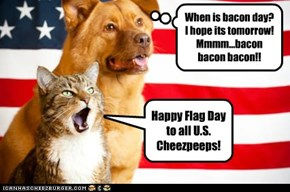Happy Flag Day to all U.S. Cheezpeeps!