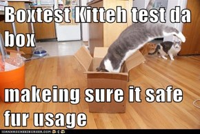 Boxtest Kitteh test da box   makeing sure it safe fur usage