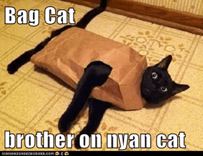 Bag Cat  brother on nyan cat