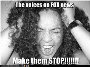 The voices on FOX news