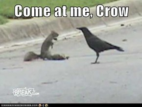 Come at me, Crow