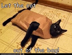 Let the cat  out of the bag!