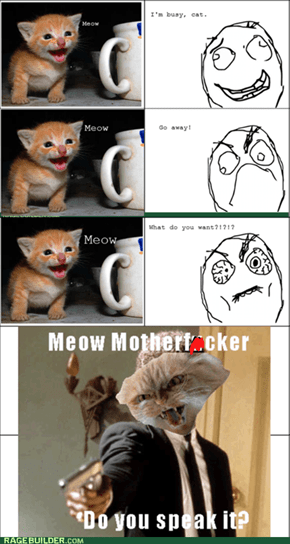 "I do not understand your ""meow"""