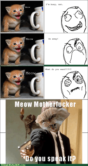 "I do not understand ""meow"""