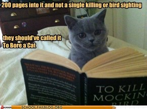 English Literature 220: Cat is Disappointed By This Deceptive Title