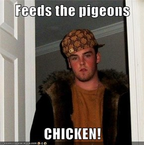 Feeds the pigeons  CHICKEN!