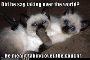 Did he say taking over the world?  ...He meant taking over the couch!