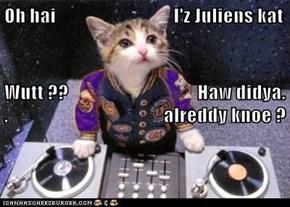 Oh hai                               I'z Juliens kat Wutt ??                                  Haw didya. .                                         alreddy knoe ?