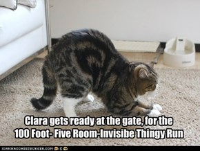 Clara gets ready at the gate, for the  100 Foot- Five Room-Invisibe Thingy Run