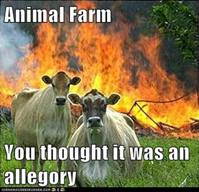 Animal Memes: Evil Cows - You Were Wrong