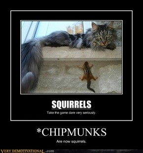 *CHIPMUNKS