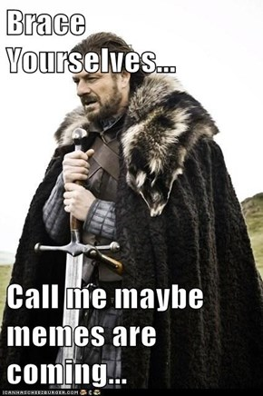 Brace Yourselves...  Call me maybe memes are coming...