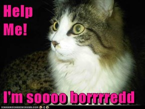 Help                                                                   Me!  I'm soooo borrrredd