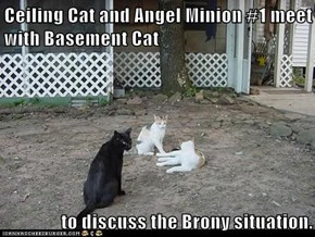 Ceiling Cat and Angel Minion #1 meet with Basement Cat  to discuss the Brony situation.