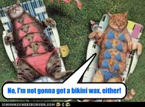 No, I'm not gonna get a bikini wax, either!