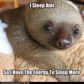 Sloth Logic