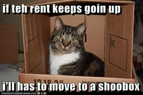 if teh rent keeps goin up  i'll has to move to a shoobox