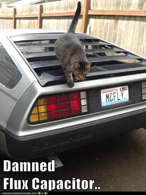 Time Travel Kitteh