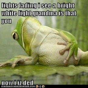 lights fading i see a bright white light grandma is that you  now i iz ded