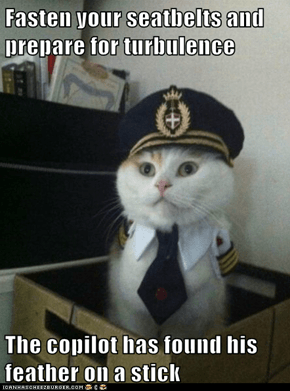 Captain Kitteh: Best Turbulence Ever