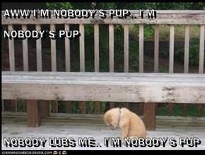 AWW I'M NOBODY'S PUP.. I'M NOBODY'S PUP  NOBODY LUBS ME.. I'M NOBODY'S PUP