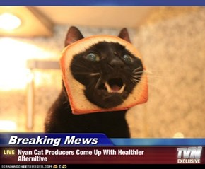 Breaking Mews - Nyan Cat Producers Come Up With Healthier Alternitive