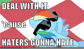 DEAL WITH IT 'cause HATERS GONNA HATE