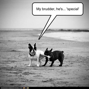 """Special"""