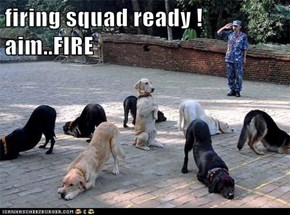 firing squad ready !  aim..FIRE