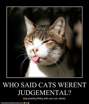 WHO SAID CATS WERENT JUDGEMENTAL?