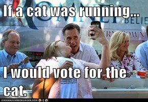 If a cat was running...  I would vote for the cat.