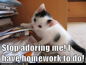 Stop adoring me! I have homework to do!